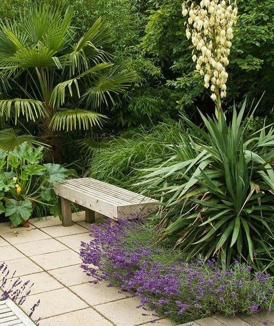 A bench amongst plants
