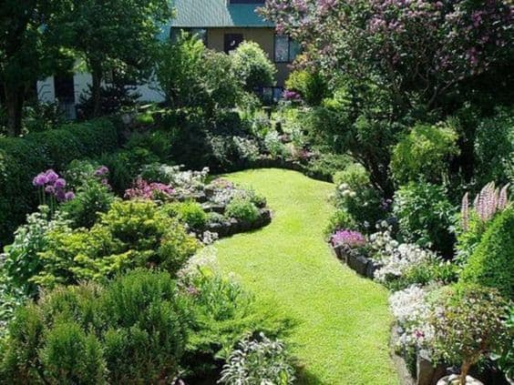 A small garden filled with greens and a variety of trees and plants