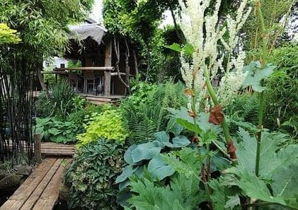 Exotic paradise garden with a jungle hut and wooden decking/bridge