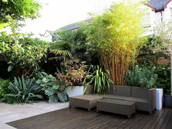Tropical plants and simple L-shaped couch concept