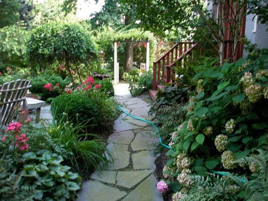 Rock garden path and colourful plants