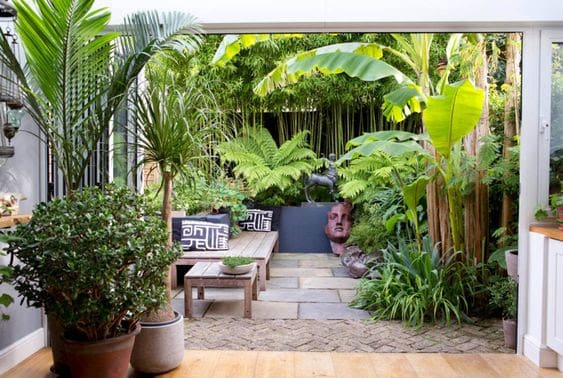 Tall tropical plants and trees used as screening, blocking out unsightly buildings and walls