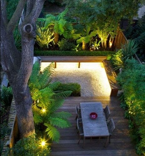 Small tropical garden with outdoor lighting accent
