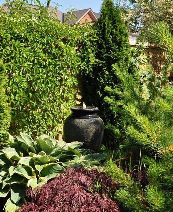 Plant-dressed garden fence