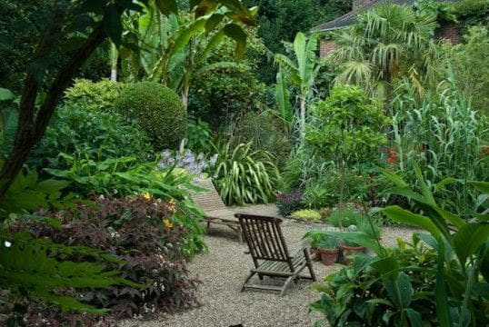 Exotic plants and wooden chairs