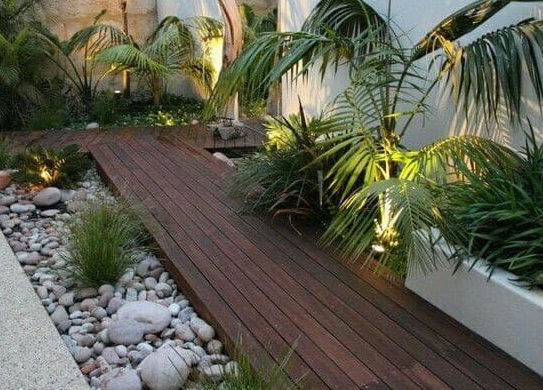 Tropical plants and modern deck