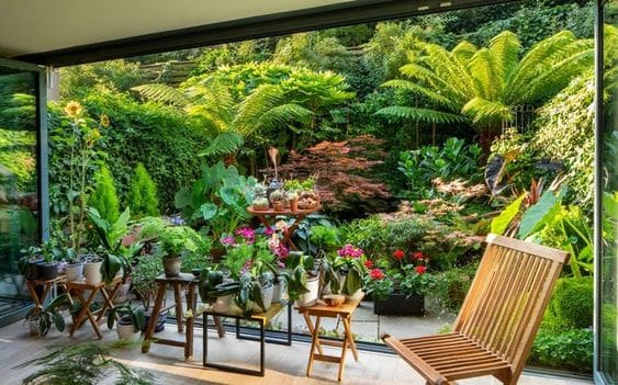 Exotic colourful garden with palm trees and plants