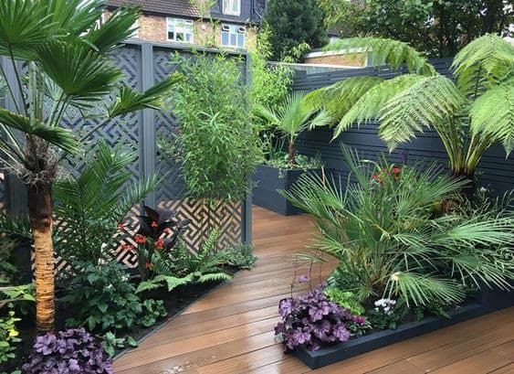 Simple wooden decking as a base for an exotic garden