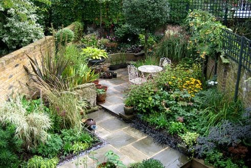 Tropical garden and small path