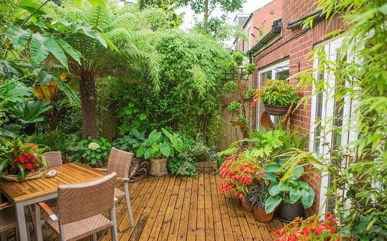 Light wood deck and table garden concept