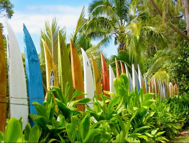 Lined surfboards as a garden fence