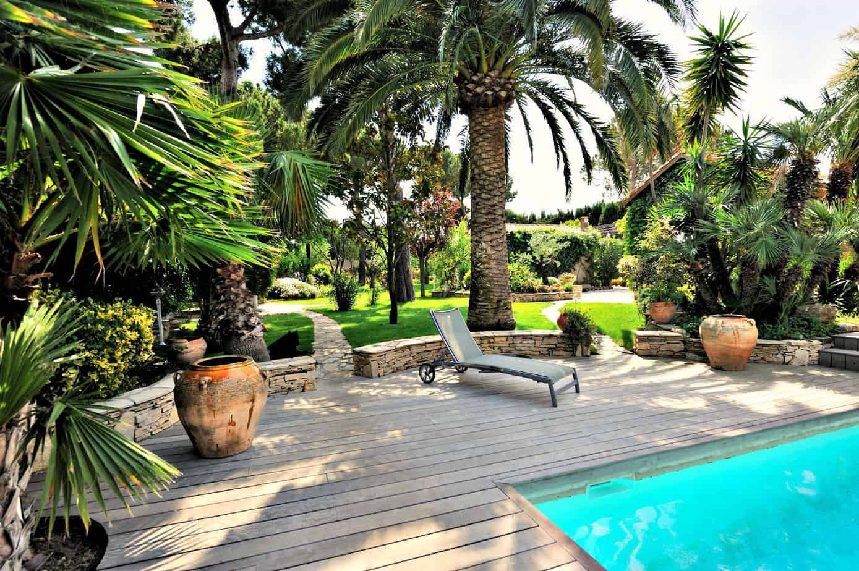 Palm trees near garden sun loungers as a source of shade