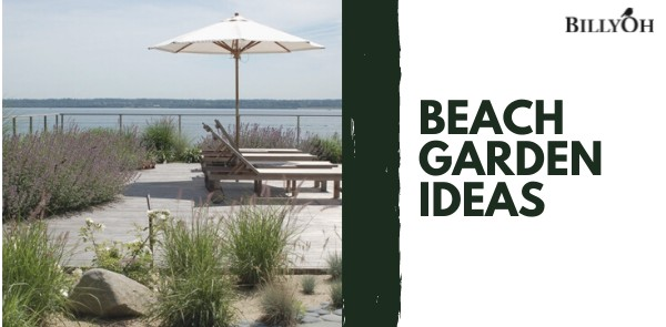 Beach Garden Ideas