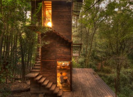 Modern treehouse with wooden deck and stairs