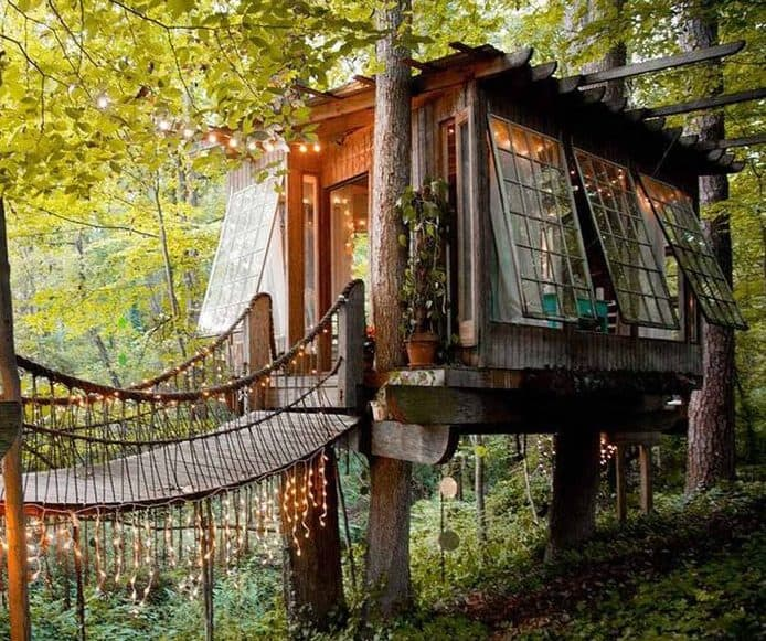Secluded treehouse with hanging bridge