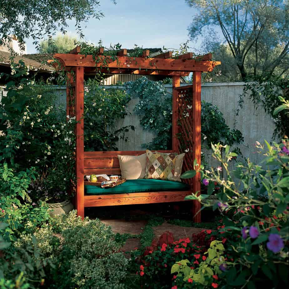 An arbour-covered bench with climbing plants