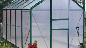 The Ultimate Polycarbonate Greenhouse Growing Guide
