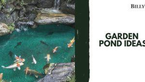 The Best Garden Pond Ideas on the Internet